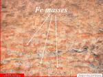 fe masses