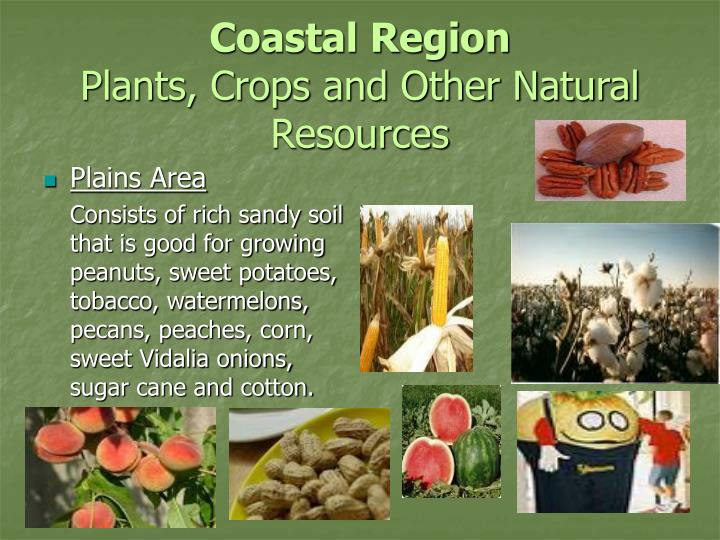 Coastal Region Natural Resources