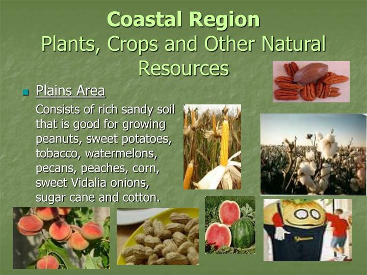 Coastal Plain Georgia Natural Resources