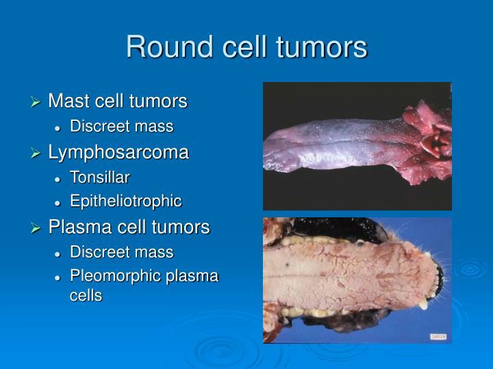 Round cell tumors