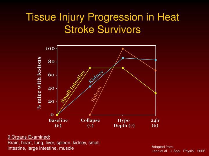 Tissue Injury Progression in Heat Stroke Survivors