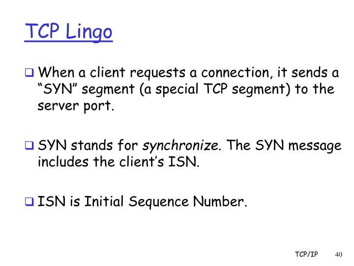 TCP Lingo