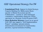 gef operational strategy for iw