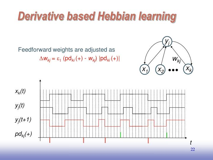 Feedforward weights are adjusted as