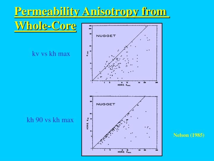 Permeability Anisotropy from