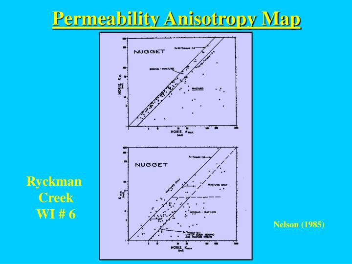 Permeability Anisotropy Map