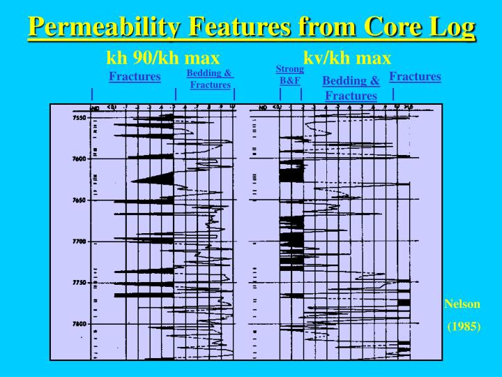 Permeability Features from Core Log