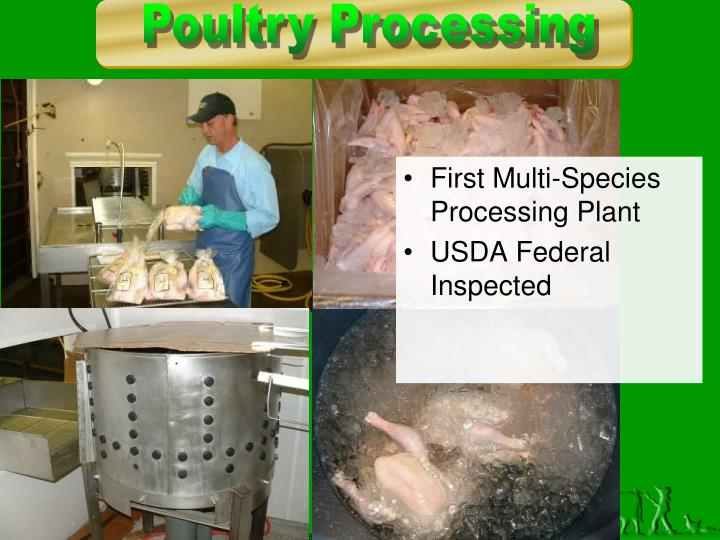 First Multi-Species Processing Plant