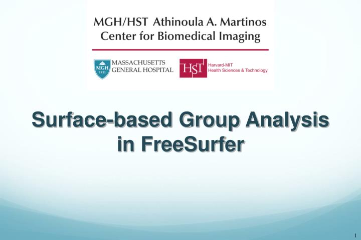 surface based group analysis in freesurfer n.