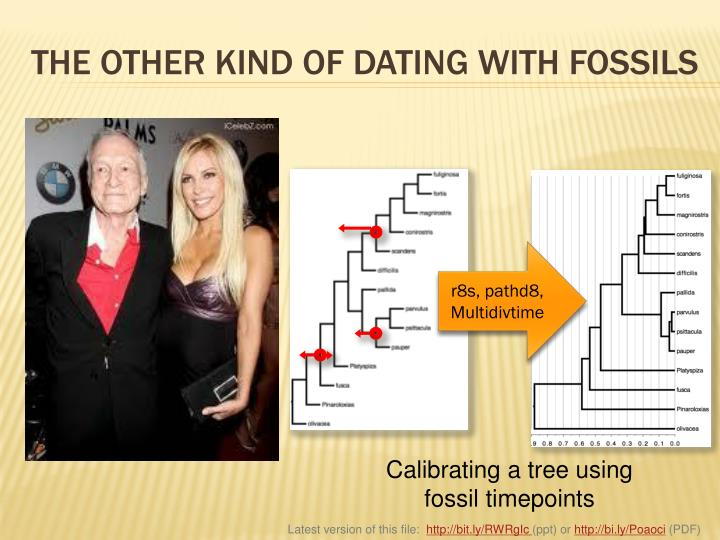 THE OTHER KIND OF DATING WITH FOSSILS