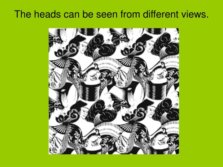 The heads can be seen from different views.