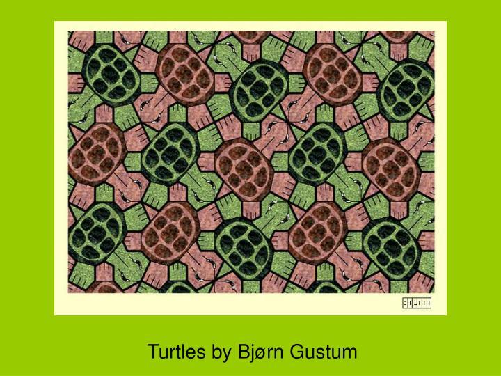 Turtles by Bjørn Gustum