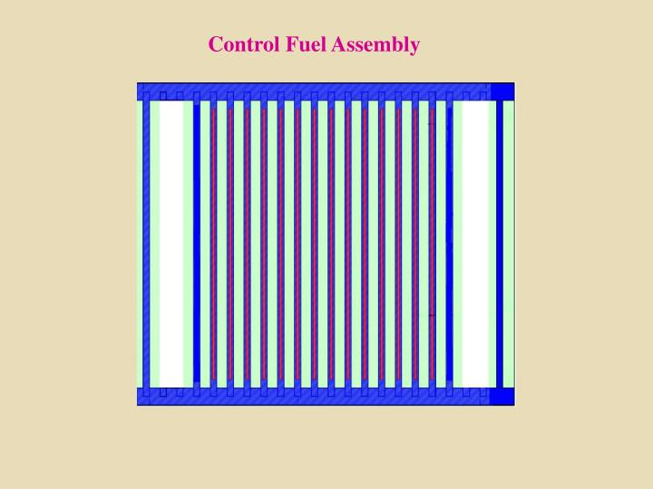 Control Fuel Assembly