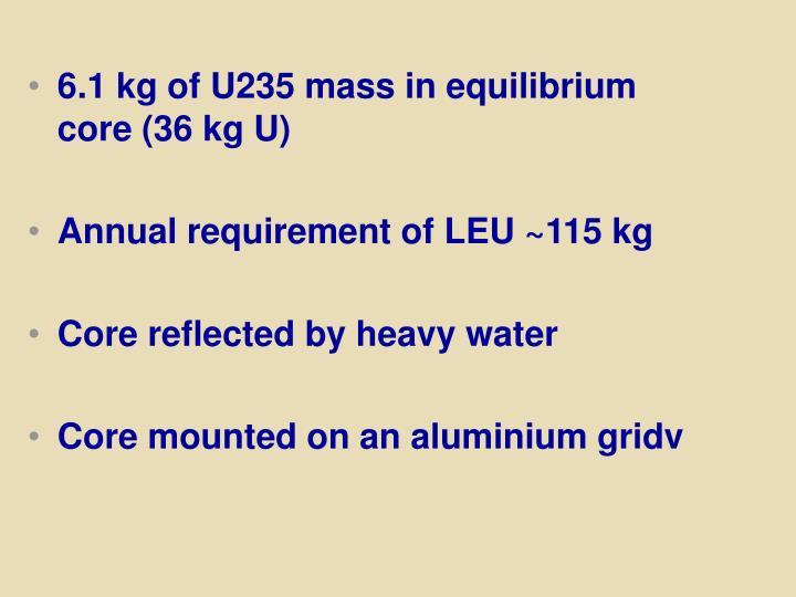 6.1 kg of U235 mass in equilibrium core (36 kg U)