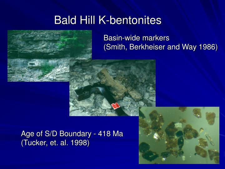 Bald Hill K-bentonites