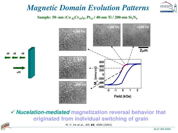 Magnetic Domain Evolution Patterns