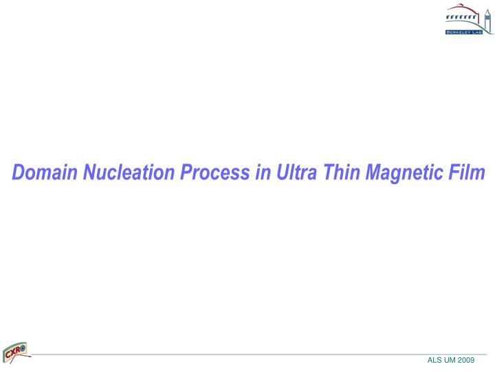 Domain Nucleation Process in Ultra Thin Magnetic Film