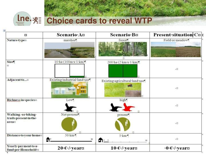 Choice cards to reveal WTP