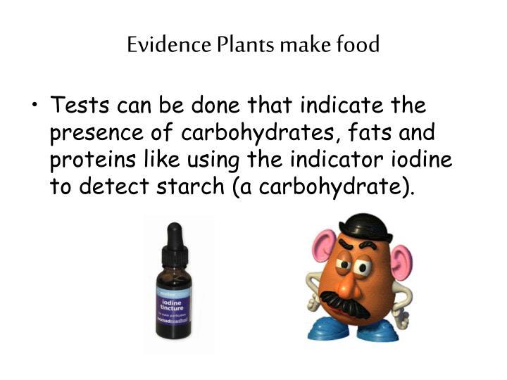 Evidence plants make food1