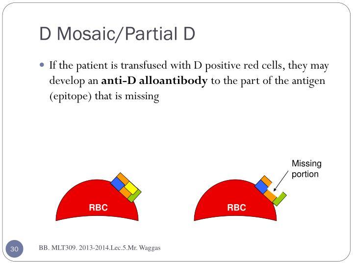 D Mosaic/Partial D