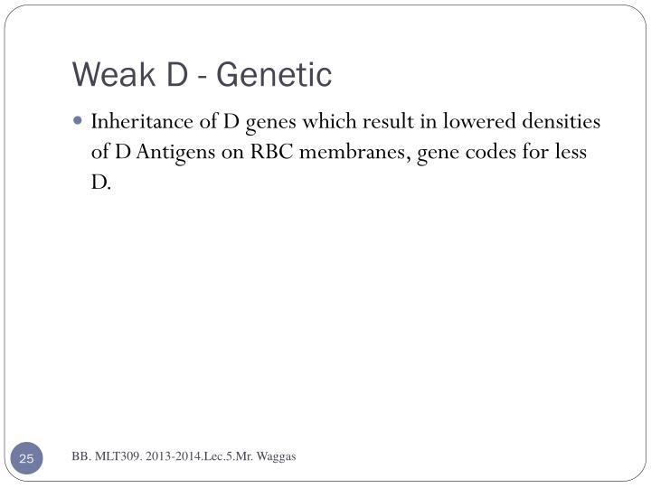 Weak D - Genetic