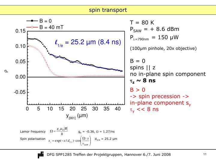 spin transport
