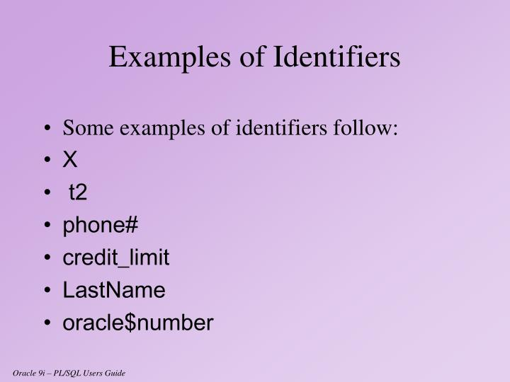 Some examples of identifiers follow: