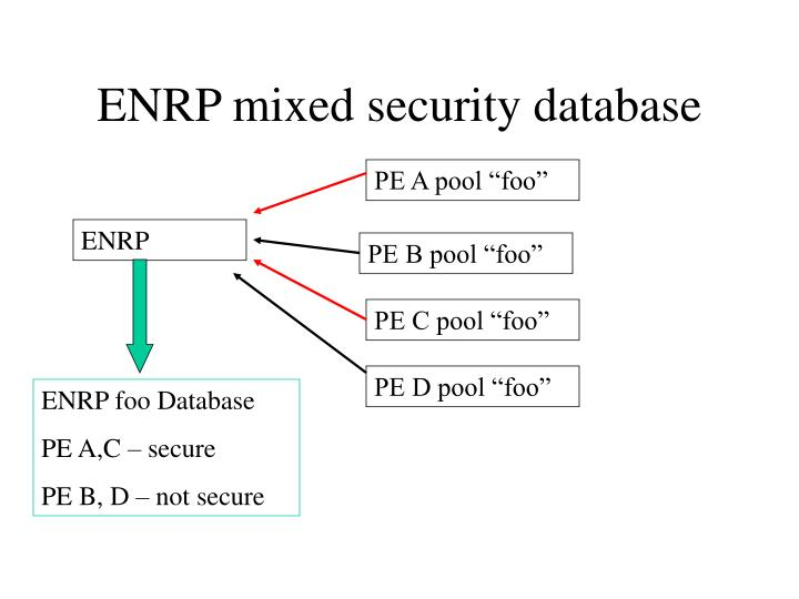 ENRP mixed security database