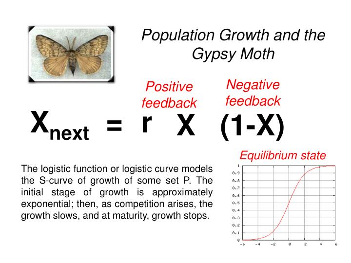 Population Growth and the Gypsy Moth