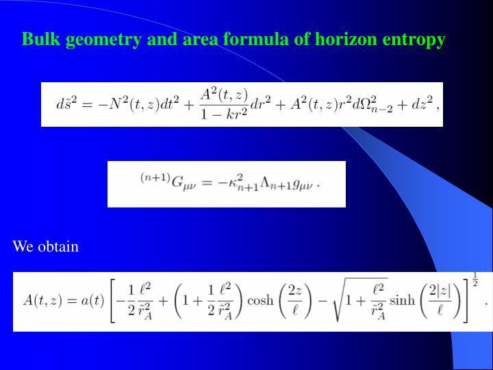 Bulk geometry and area formula of horizon entropy