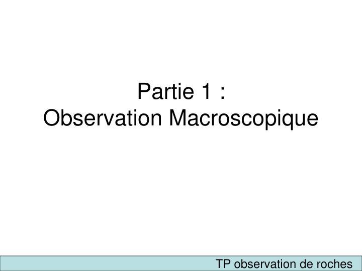 Partie 1 observation macroscopique