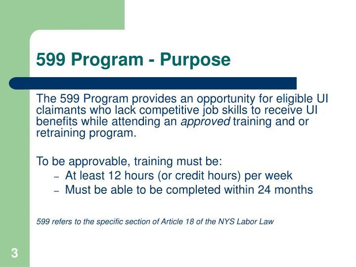 599 program purpose
