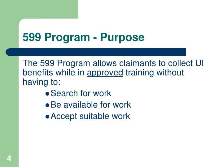 599 Program - Purpose
