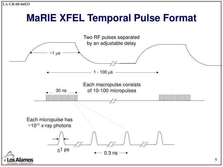 MaRIE XFEL Temporal Pulse Format
