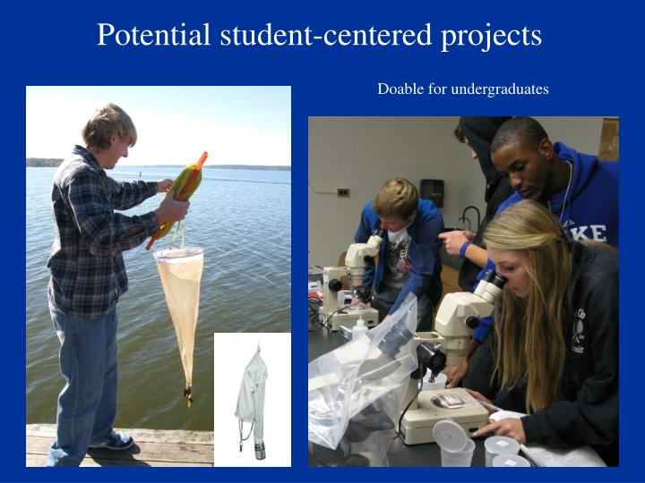 Potential student-centered projects