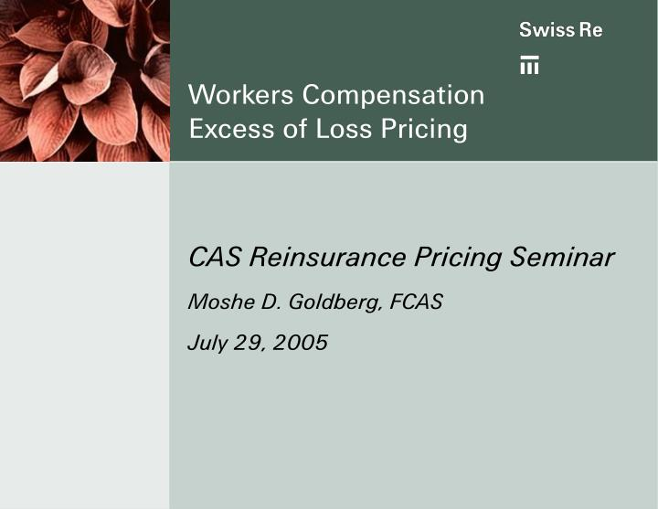 workers compensation excess of loss pricing n.