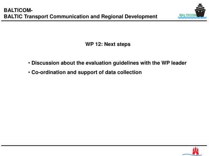 WP 12: Next steps