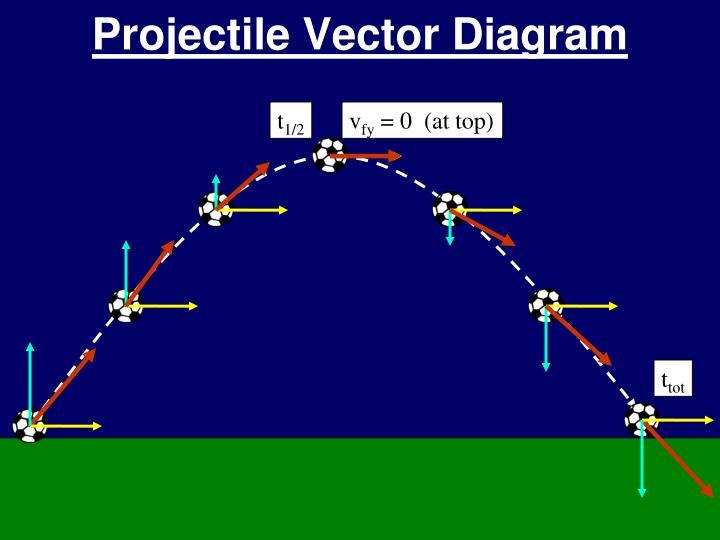 Projectile Vector Diagram