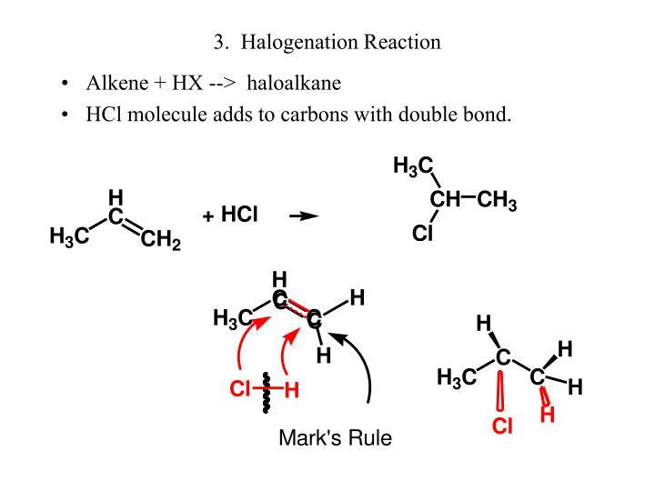3.  Halogenation Reaction