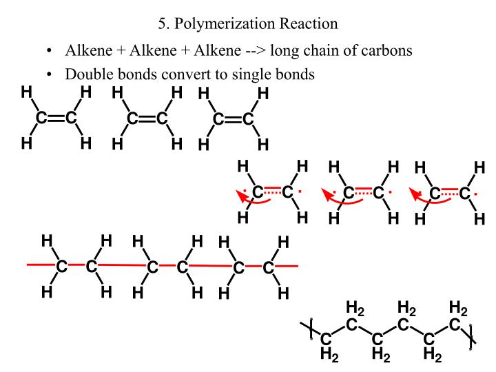 5. Polymerization Reaction