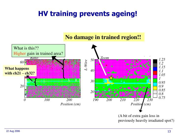 HV training prevents ageing!