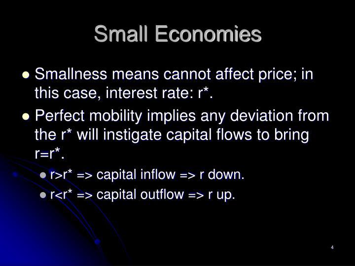 Small Economies