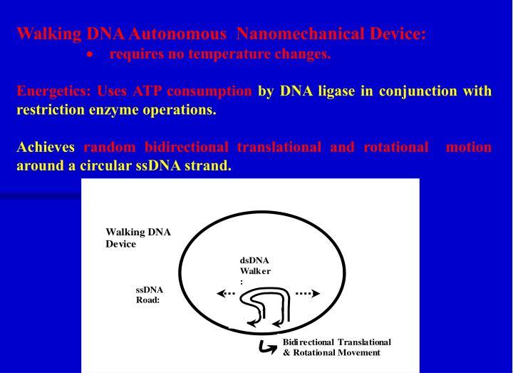 Walking DNA Autonomous  Nanomechanical Device: