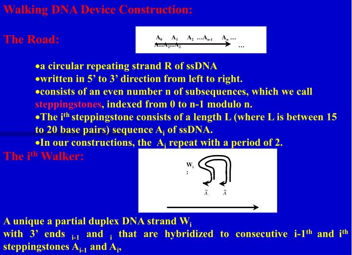 Walking DNA Device Construction: