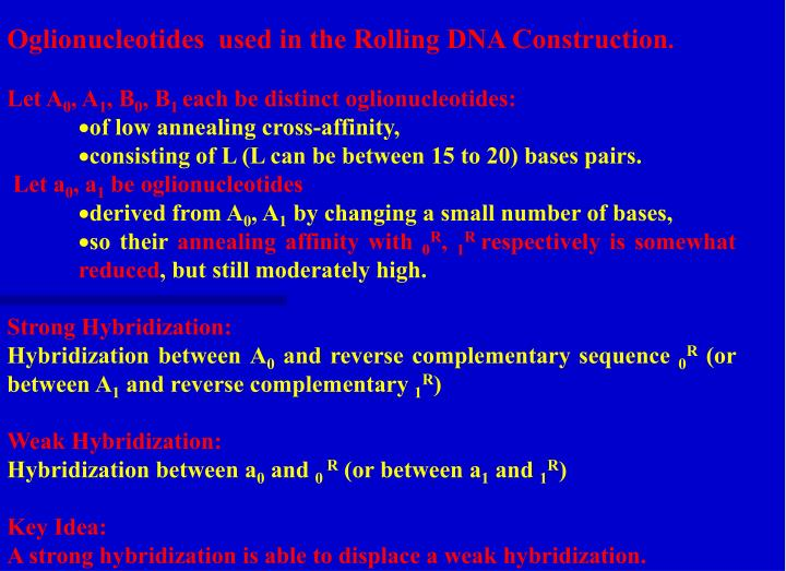 Oglionucleotides  used in the Rolling DNA Construction