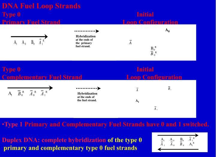 DNA Fuel Loop Strands