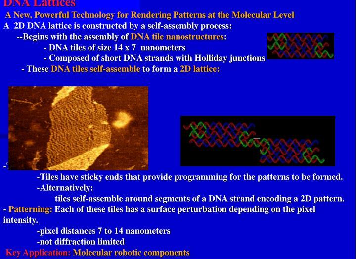 DNA Lattices
