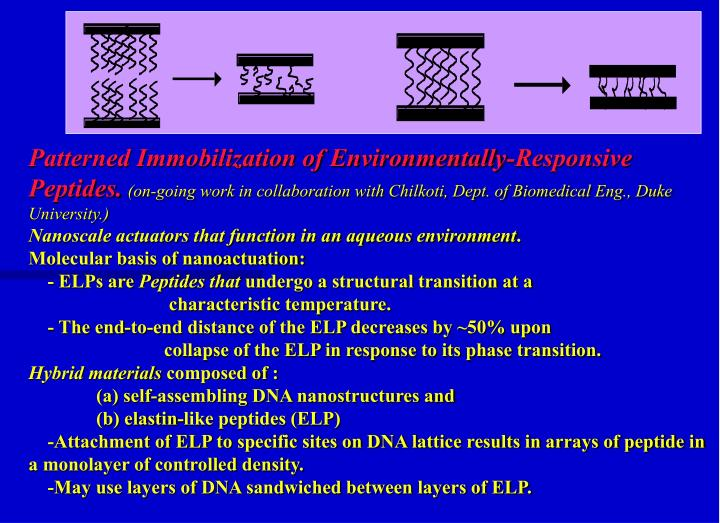 Patterned Immobilization of Environmentally-Responsive Peptides.