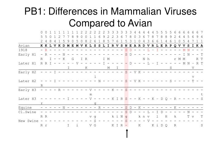 Pb1 differences in mammalian viruses compared to avian