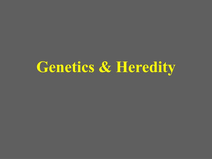 genetics and heredity doc Name date chapter 12 patterns of heredity and human genetics class reinforcement and study guide section 121 mendelian inheritance of human traits in your textbook.